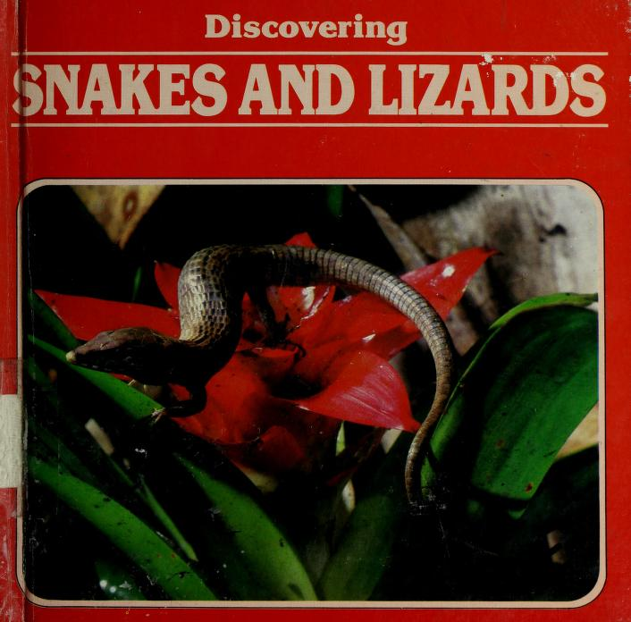 Discovering snakes and lizards by Neil Curtis